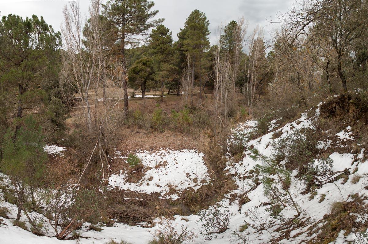 Los prados desde la umbría. El arroyo aquí fluye, aunque más abajo desaparece como tragado por la tierra (nunca mejor dicho).
