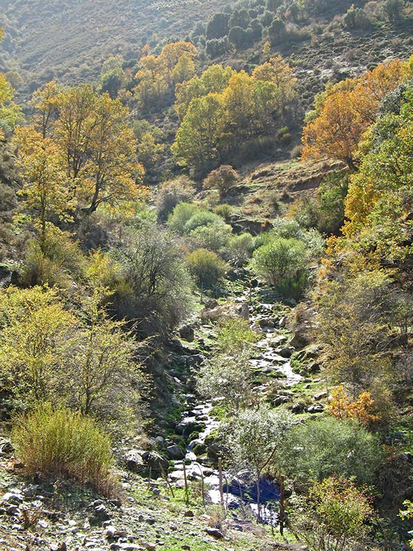 13. Después de cruzar, mirando río arriba.