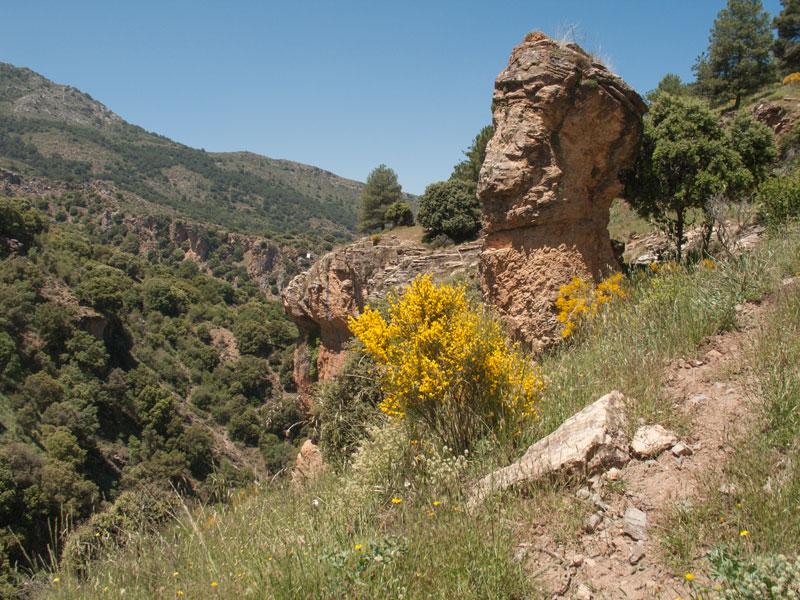 20. Vistosa roca junto a la senda que sube a los tajos.