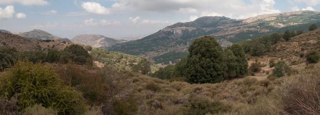 De vuelta a la vaguada, el sol y la sombra juegan al gato y al ratón entre el Cerro de los Poyos y el Dornajo.