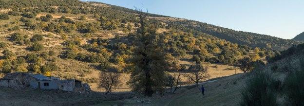 Por donde accedemos a la pista sin problemas. Esta es la cortijada baja; la alta, todavía mas ruinosa, la superamos al principio al ascender el valle.