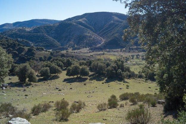 Otra vista del valle, que puede seguirse hasta la Fresnedilla, donde ya hemos estado viniendo del Este. Al fondo se avista el Paredón con sus molinos -que no gigantes…-
