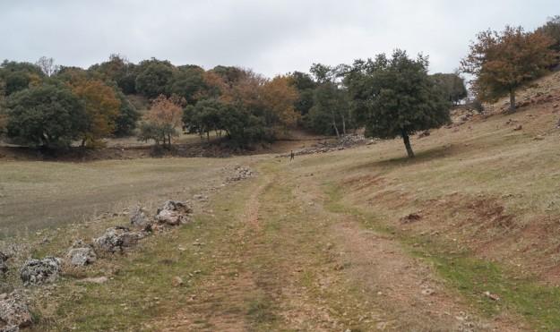 El camino ocupa el fondo del valle, medio mimetizado con el paisaje, pero alguna descarnadura revela una potente estructura de piedras por debajo.