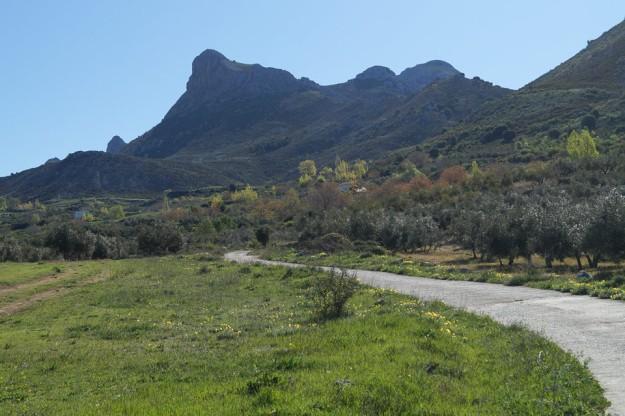 Poco antes de llegar ya nos encandila el paisaje, dominado por ese majalijar invertido donde el Peñón del Jorobado hace las veces de cima principal.
